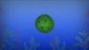 Embedded thumbnail for Algas y Biorremediación - VITAMINA C