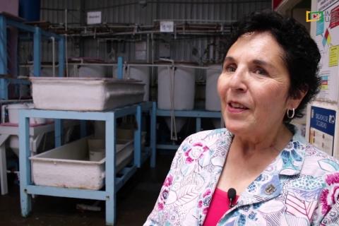 Embedded thumbnail for Entrega de semillas de almeja a productores por parte del IIO, Campus Ensenada