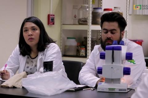 Embedded thumbnail for Taller de arácnidos en la Facultad de Ciencias, Campus Ensenada