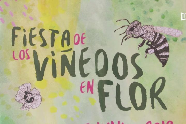 Embedded thumbnail for Agenda: Fiesta de los Viñedos en Flor 2019 (Provino BC)