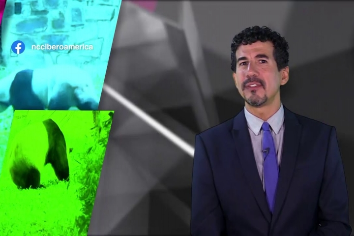 Embedded thumbnail for Noticiero Científico y Cultural Iberoamericano - 19 al 25 de Octubre 2020