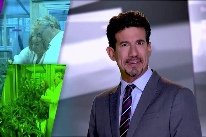 Embedded thumbnail for Noticiero Científico y Cultural Iberoamericano - EP 216