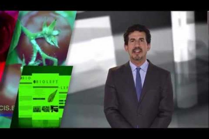 Embedded thumbnail for Noticiero Científico y Cultural Iberoamericano - 18-05-2020 al  24-05-2020